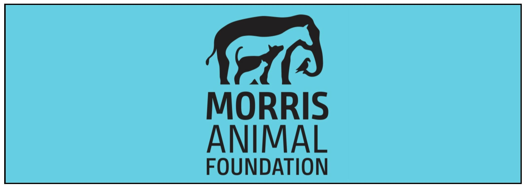 Morris Animal Foundation Application and Sponsor Page