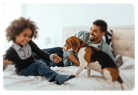A man, a kid and dog playing on a bed