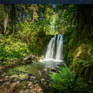 WesternU Oregon - waterfall