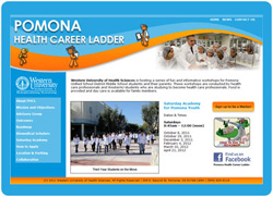 Thumbnail of Pomona Ladder Website