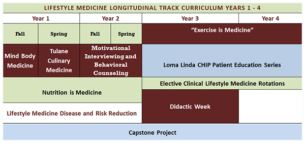 LMT curriculum years 1-4 chart