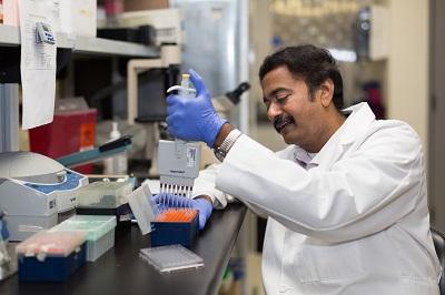 Venketaraman Lab Pic