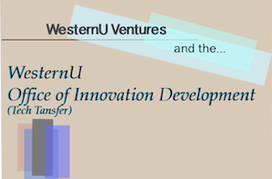 ventures and innovation development