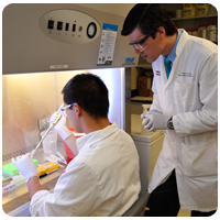 Two students engaged in research