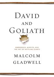 david-goliath-book